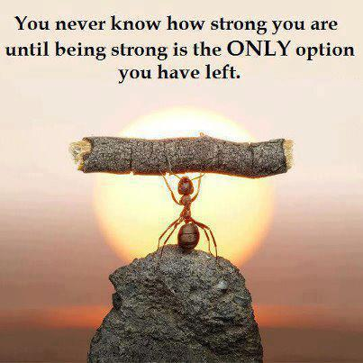 Strong ant