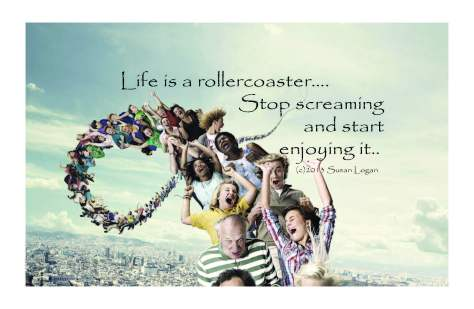 life-is-a-rollercoaster-newa3