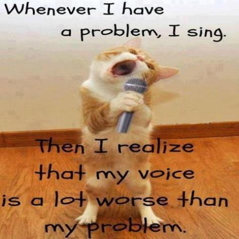 Problem sing